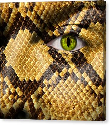 Morphing Canvas Print - Snake Eye by Semmick Photo
