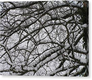 Snow Against A Grey Sky Canvas Print