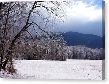 Snow And Ice Canvas Print by Paul Mashburn
