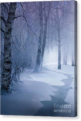 Snow Brook Canvas Print by Robert Foster