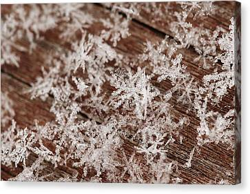 Snow Close Up Canvas Print
