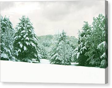 Canvas Print featuring the photograph Snow Covered Countryside by Michael Waters