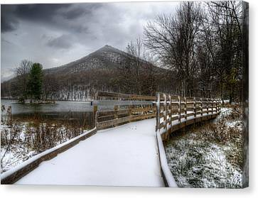 Snow Covered Pathway 3 Canvas Print by Steve Hurt