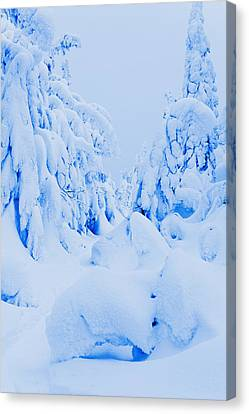 Snow-covered To Vallee Des Fantomes Canvas Print by Yves Marcoux