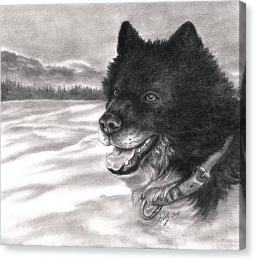 Huskies Canvas Print - Snow Dog by Kathleen Kelly Thompson