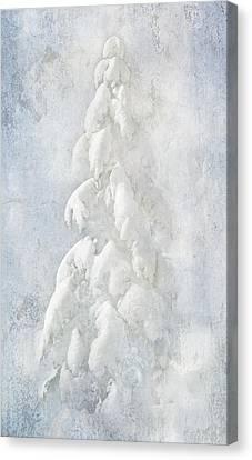 Snow Folly Canvas Print