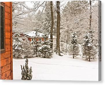 Snow In The Adirondacks Canvas Print by Ann Murphy