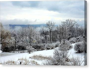 Snow In Winter Ithaca New York Canvas Print by Paul Ge