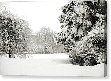 Canvas Print featuring the photograph Snow Packed Park by Lenny Carter