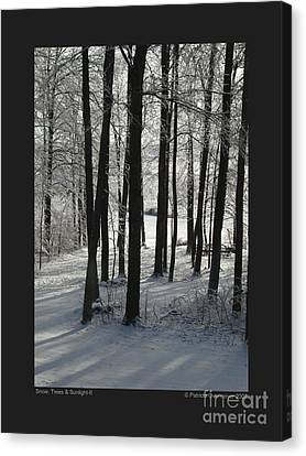 Snow Trees And Sunlight-ii Canvas Print by Patricia Overmoyer