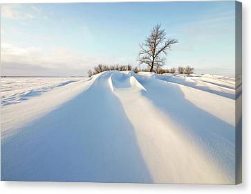 Snowdrift Canvas Print by Susan McDougall Photography
