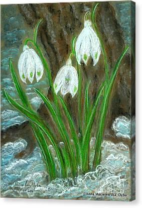 Snowdrops Canvas Print by Anna Folkartanna Maciejewska-Dyba