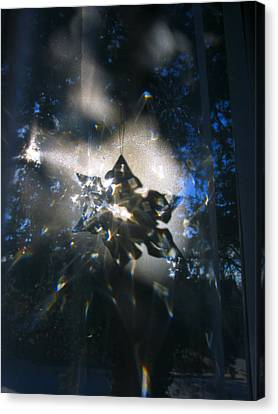 Snowflake Crystal Shadow Canvas Print by Adam Long