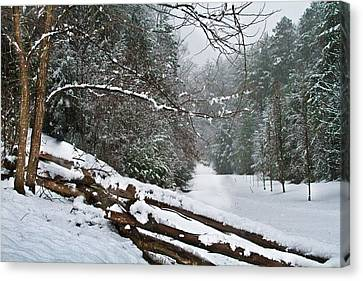 Snowy Fence Canvas Print by Debra and Dave Vanderlaan