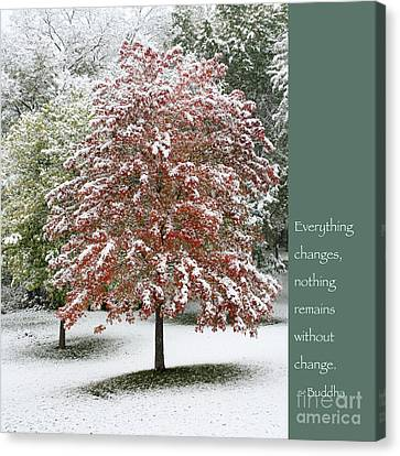 Snowy Maple With Buddha Quote Canvas Print
