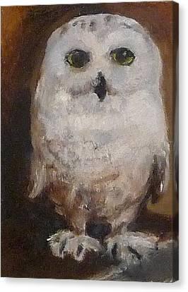 Snowy Owl Canvas Print by Jessmyne Stephenson