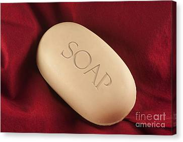 Soap Bar Canvas Print by Blink Images