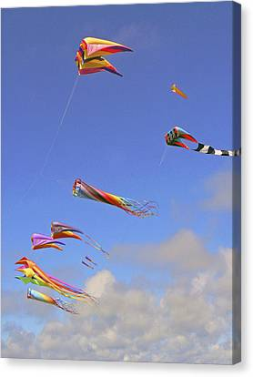 Soaring With The Clouds Canvas Print by Pamela Patch