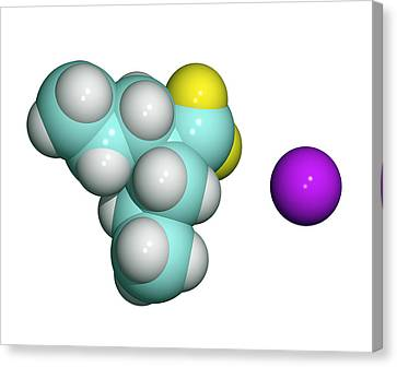 Sodium Valproate, Anti-epilepsy Drug Canvas Print by Dr Tim Evans