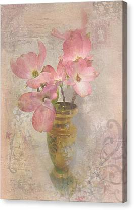 Softly Blooming Canvas Print by Cindy Wright