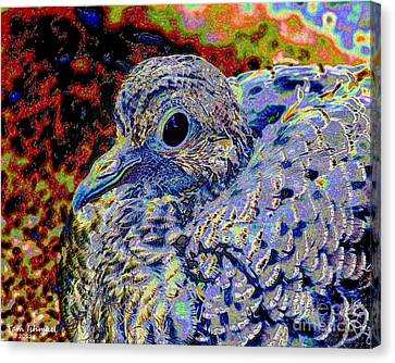 Solar Dove Canvas Print by Tammy Ishmael - Eizman