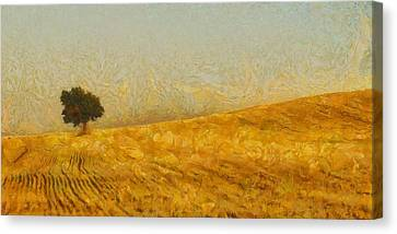 Solitude Is Golden Canvas Print by Aaron Stokes