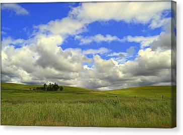 Canvas Print featuring the photograph Solitude by Rima Biswas