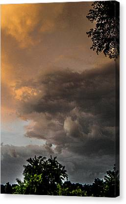 Something Wicked Canvas Print by Christy Usilton
