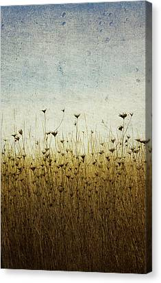 Somewhere Canvas Print by Rebecca Cozart