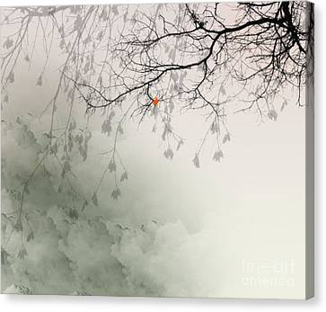 Song Of The Fall Season Canvas Print by Trilby Cole