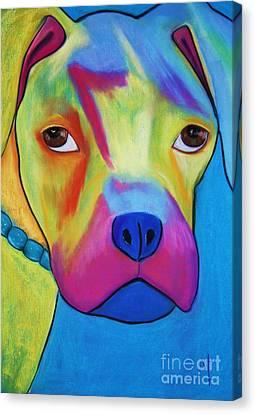 Sonny Blu Canvas Print by Melinda Etzold