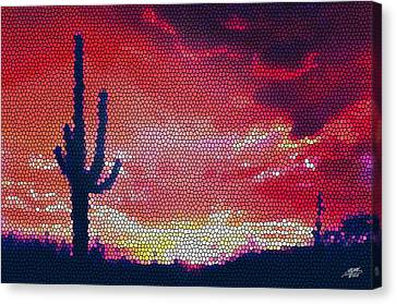 Sonoran Sunrise Canvas Print by Steve Huang