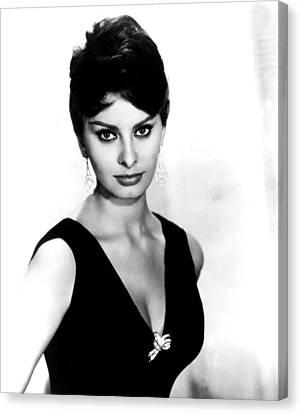 Sophia Loren, 1960 Canvas Print by Everett