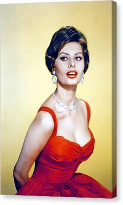 Sophia Loren, Late 1950s Canvas Print by Everett