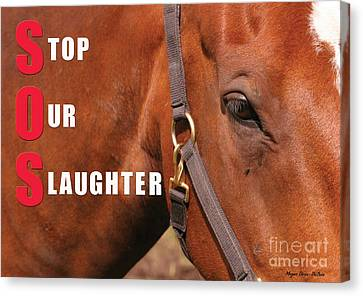 Canvas Print featuring the photograph Sos Stop Our Slaughter by Megan Dirsa-DuBois