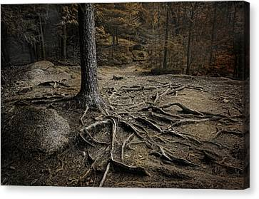 Soul Searching Canvas Print by Robin-Lee Vieira