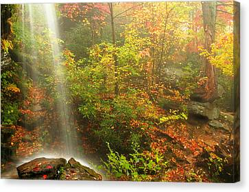 Sounds Of Autumn Canvas Print by Darren Fisher