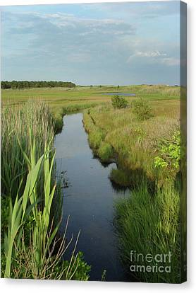 South Cape Channel Canvas Print by Gene  Marchand