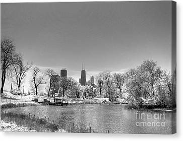 Lincoln Park Lagoon Canvas Print - South From Lincoln Park Lagoon by David Bearden