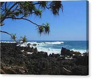 South Shore Of Maui Canvas Print by Connie Fox