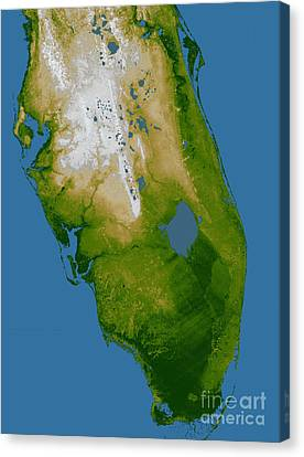 Southern Florida Canvas Print by Stocktrek Images