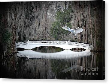 Canvas Print featuring the photograph Southern Plantation Flying Egret by Dan Friend
