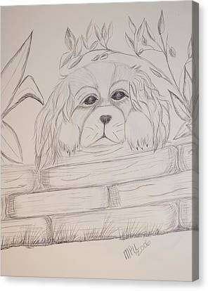 Canvas Print featuring the drawing Spaniel Pup by Maria Urso