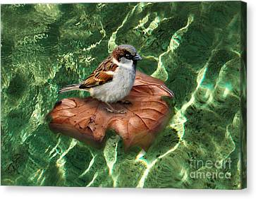 Canvas Print featuring the digital art Sparrow On A Quest by Rosa Cobos