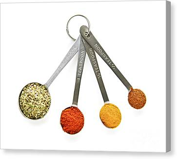 Spices In Measuring Spoons Canvas Print by Elena Elisseeva