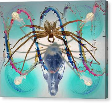 Spider Dna Canvas Print by Adam Long