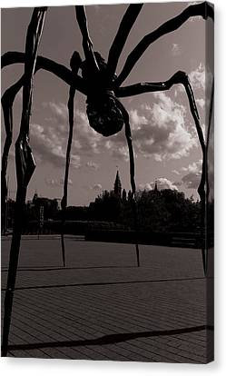 Canvas Print featuring the photograph Spider by Josef Pittner