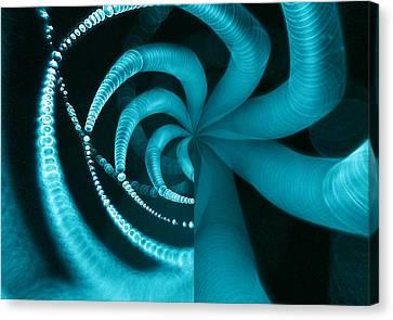 Spiderweb Work Canvas Print by Odon Czintos