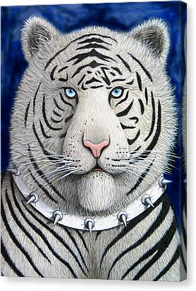 Spike The Tiger Canvas Print by Lance Headlee