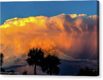 Spirit In The Clouds Canvas Print by Shannon Harrington